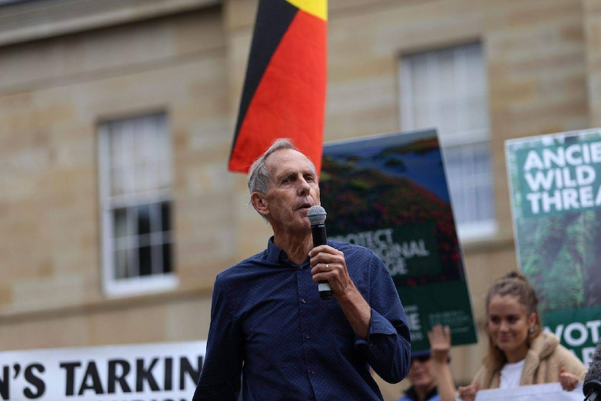 Bob Brown, former leader of the Greens