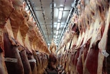 A huge meat locker with carcasses hanging on hooks like suits in a wardrobe.