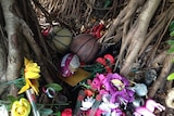 Tributes remain in a fig tree near the Manoora home.