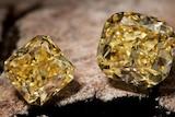 A close up of three yellow diamonds sitting on a rock