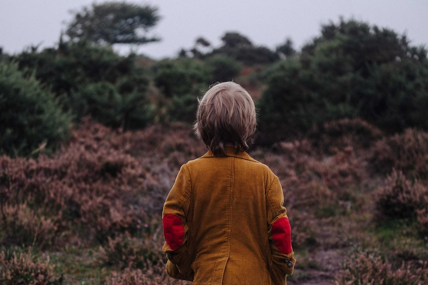 A child stares into a forest