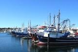 Fishing boats Port Lincoln SA