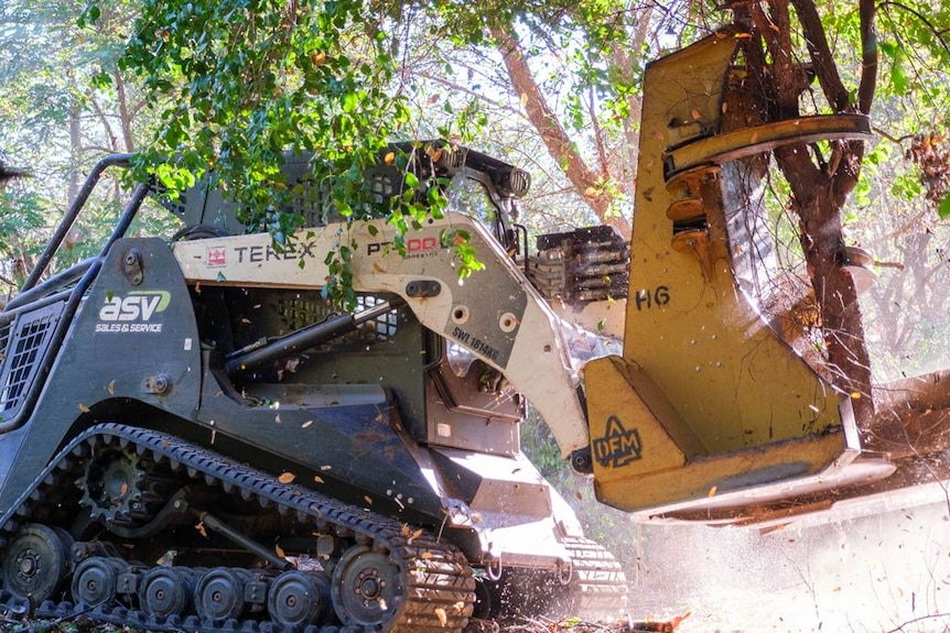 A close up of a yellow machine picking up a tree