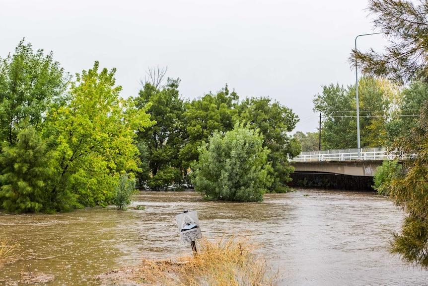 A floodway sign is almost entirely underwater as a creek breaks its banks.