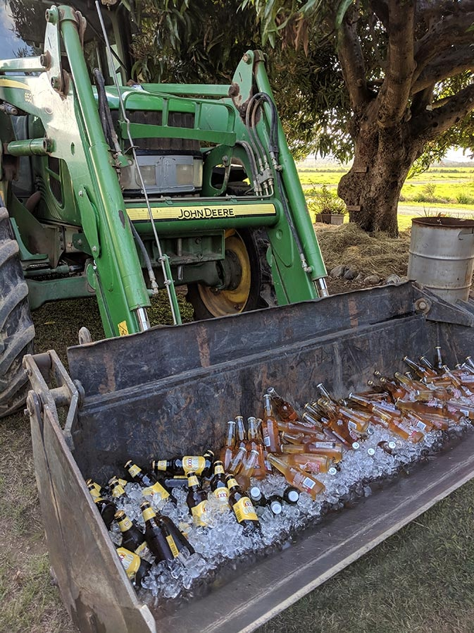 Green tractor bucket full of ice and beer.