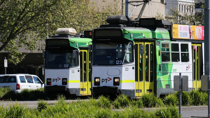 Two stationary Melbourne trams