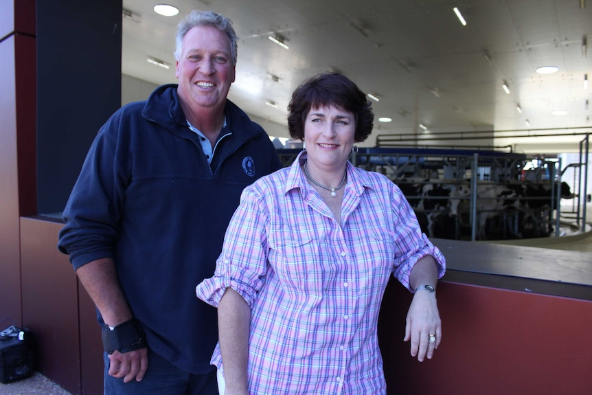 A man and woman smile as they lean on a viewing window looking into a a dairy filled with cows.