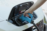 A hand pushes an electric cord into a car.