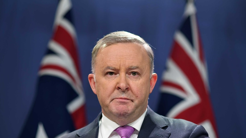 Anthony Albanese stands before two flags