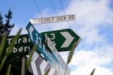 A collection of road signs with one saying Curly Dick Rd on top