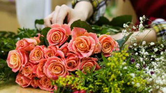 Roses being tied in a bunch by a florist.