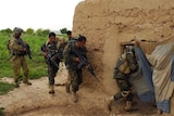 Australian-trained Afghan National Army engineers rush into a compound of interest.