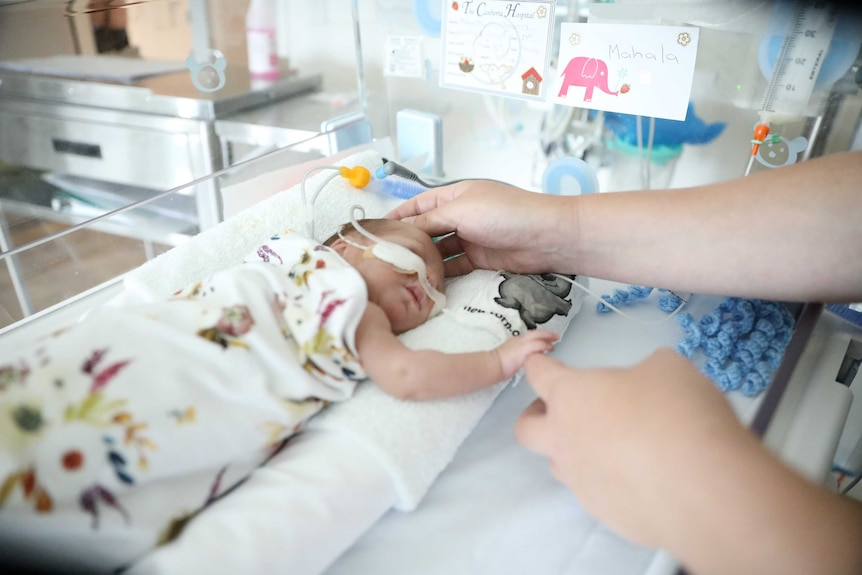 A very small baby lies in a bassinet in hospital, holding her mother's finger.