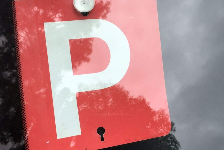 A red p-plate sign in a car window.
