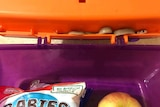 A baby brown snake tucked into the lip of a school lunchbox