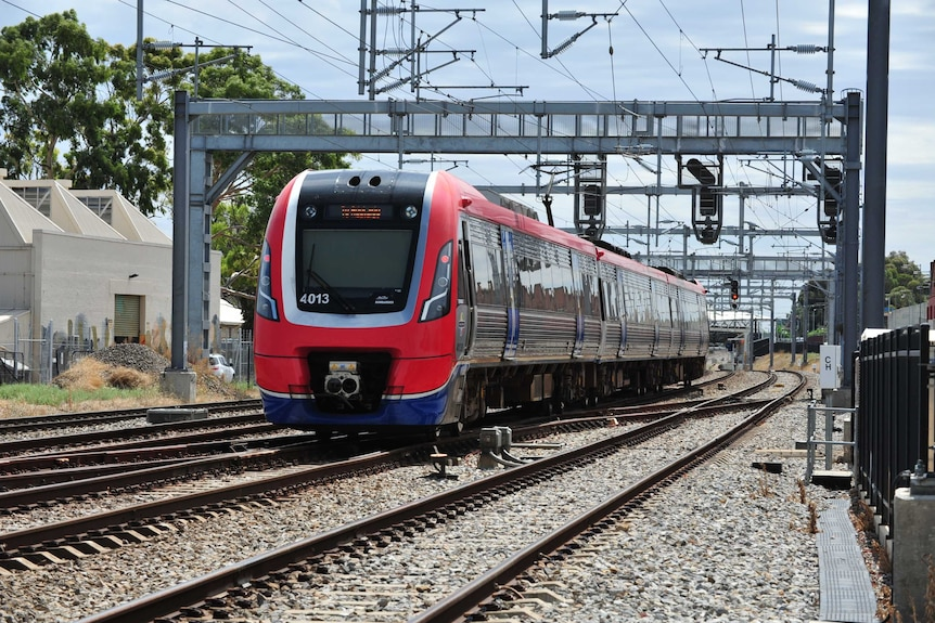 A red and blue train on tracks in Adelaide