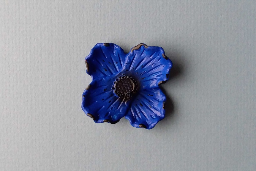 A blue lead poppy, on a white background.