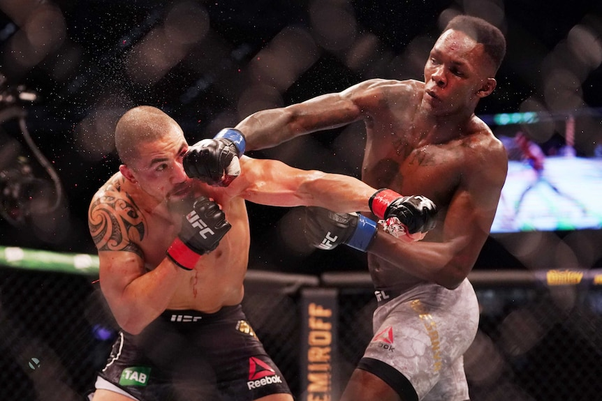 Israel Adesanya stuns Robert Whittaker at UFC 243, knocking out world  welterweight champion in round two - ABC News