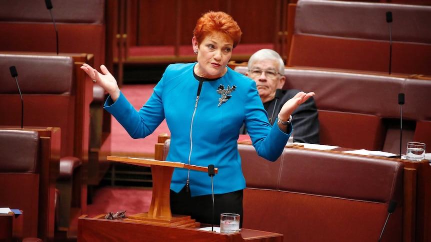 Main points from Pauline Hanson's Senate speech