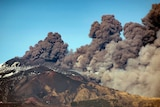A wide landscape photograph shows three-quarters of Mt Etna, spewing a column of smoke against a clear sky.