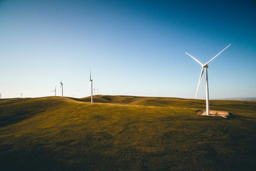 Dozens of wind turbines scattered across the horizon.