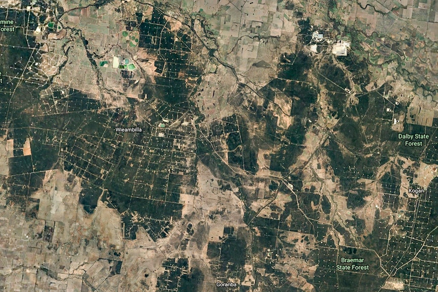 A satellite photo from Google Earth of hundreds of CSG wells near Chinchilla in September 2019.