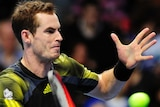 Opening win ... Andy Murray battled past Thomas Berdych in three sets
