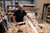 Paul stands holding an unfinished cricket bat in front of a pile of woodshavings.