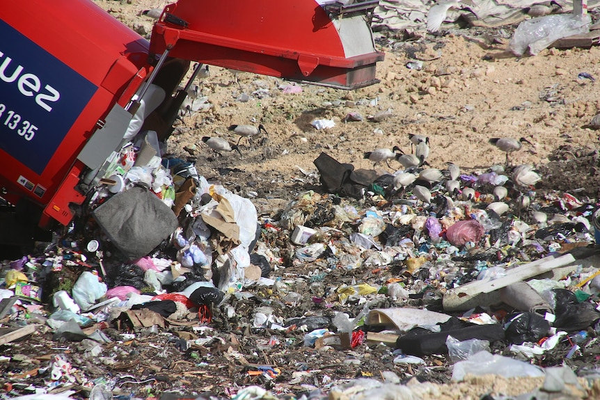 A close-up of rubbish being dumped in landfill by a red tractor in Perth.