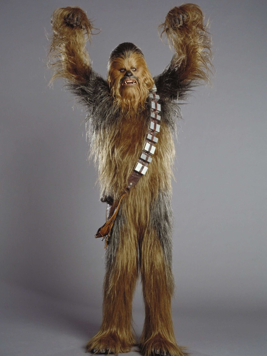 Peter Mayhew in full costume as Chewbacca.