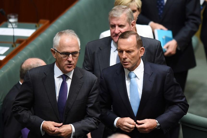 Prime Minister Tony Abbott speaks to Communications Minister Malcolm Turnbull