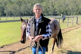 A man stands in a paddock with a horse