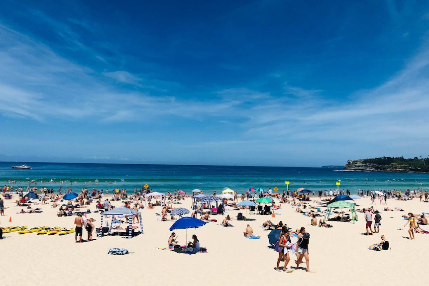 A busy Sydney beach on a clear blue day, with lots of colourful umbrellas and people.