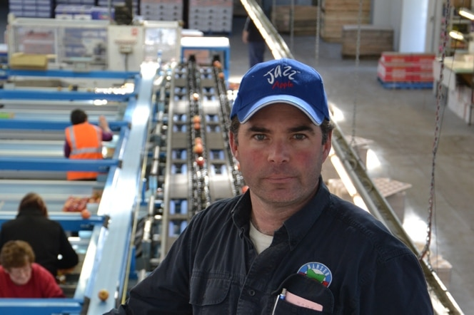 Hansen Orchards owner and cherry grower, Howard Hansen, in  front of a production line.