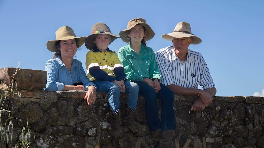A family of mother and father, boy and girl sitting on a stone fence