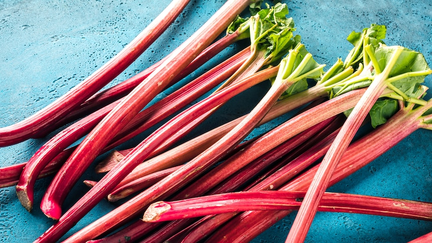A pile of rhubarb on a blue surface.