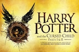 The play is set 19 years after Harry Potter and the Deathly Hallows.