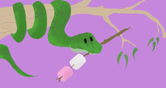 Illustration of a snake curled around a tree branch holding a skewer with marshmallows on it in its mouth.