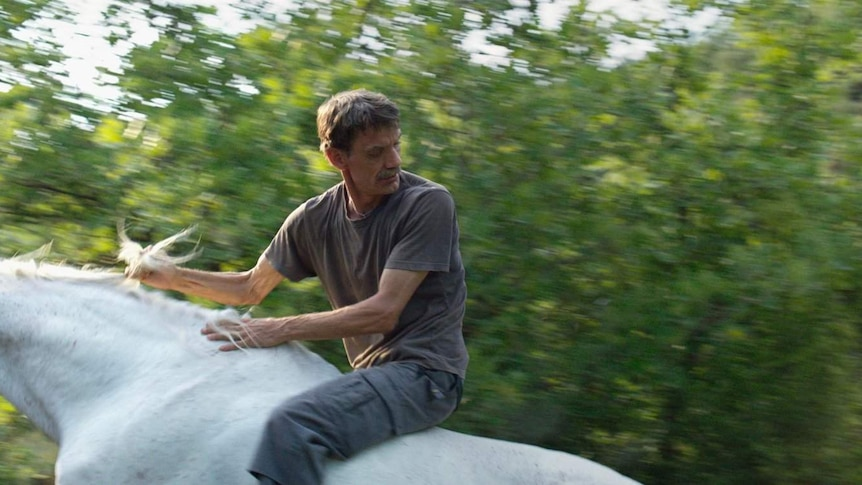 A man on horse back, riding fast and looking over his shoulder, in a lush green forest.