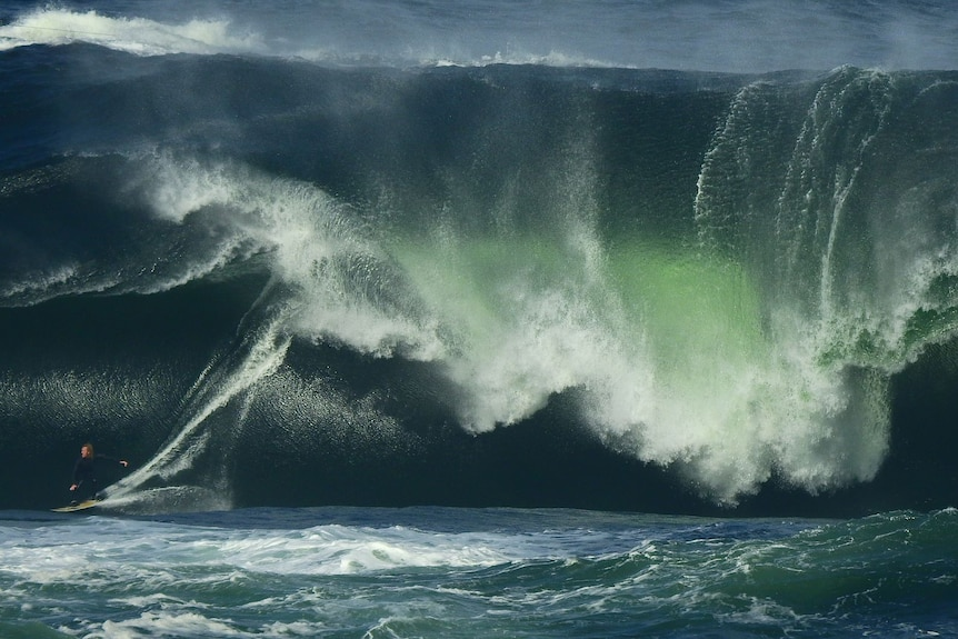 A surfer rides an enormous, heavy wave that towers over him like a building.
