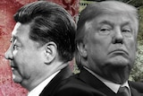 A graphic image of President Xi and President Trump in front of picture of the Chinese and US national currency.