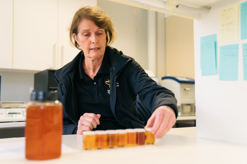 Dr Liz Barbour, CEO of the Cooperative Research Center for Honey Bee Products at the University of WA