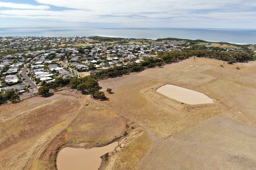 An aerial shot of a coastal town showing housing strethching out to sea and a large piece of undeveloped land next door.