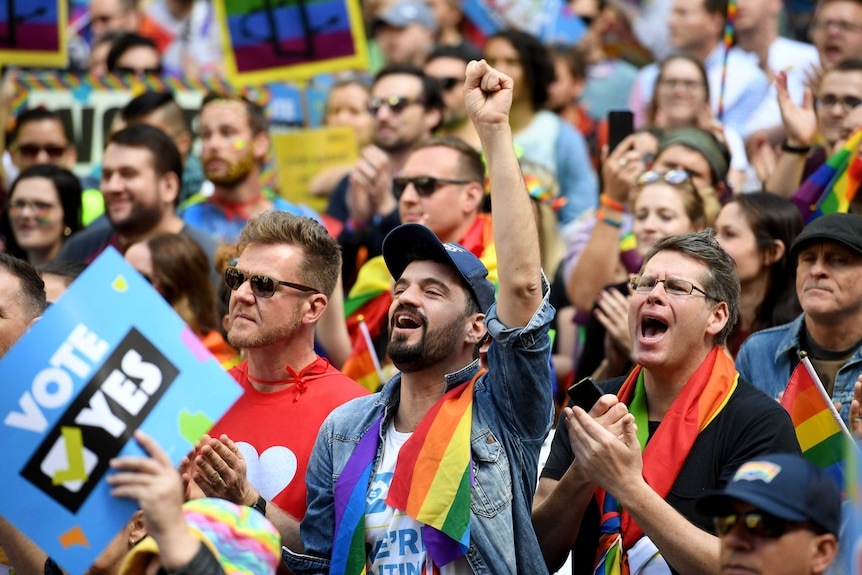 Man with rainbow flag around his neck raises clenched fist surrounded by same-sex marriage supporters at rally