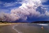 A pyrocumulonimbus or fire thunderstorm cloud.