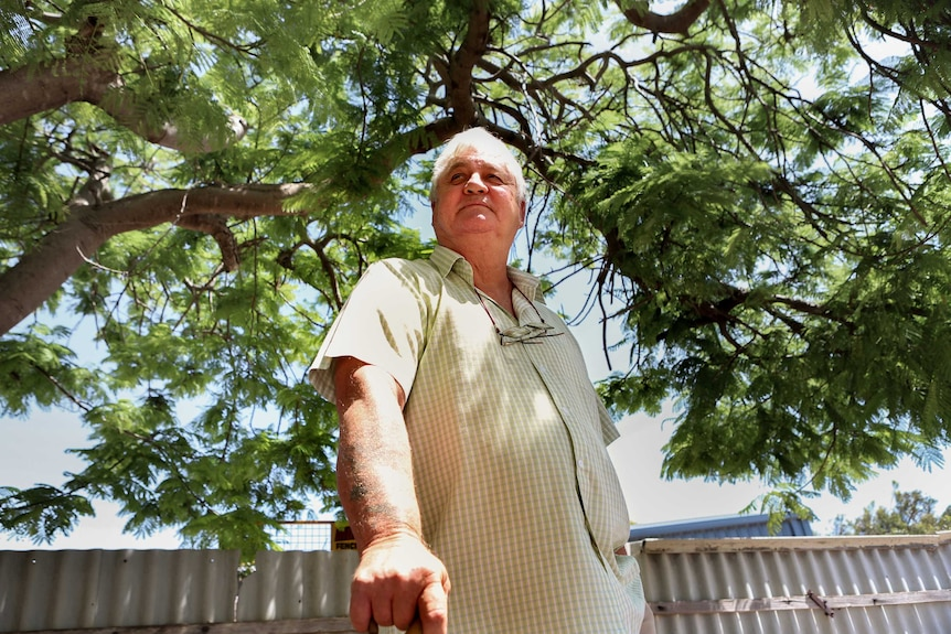 Man in light green chequered shirt stands under tree green leaf canopy