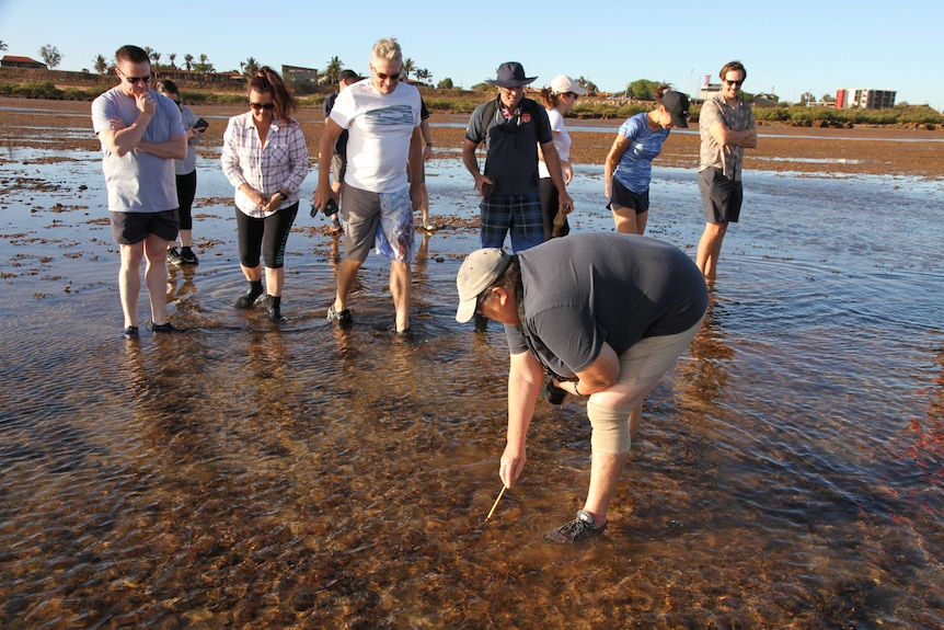 A group of people stand ankle deep in water, looking down around them, with one person bending down to poke under the surface.