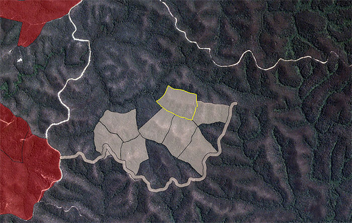 Satellite image showing planned logging outside allocation area near Helter Skelter coupe