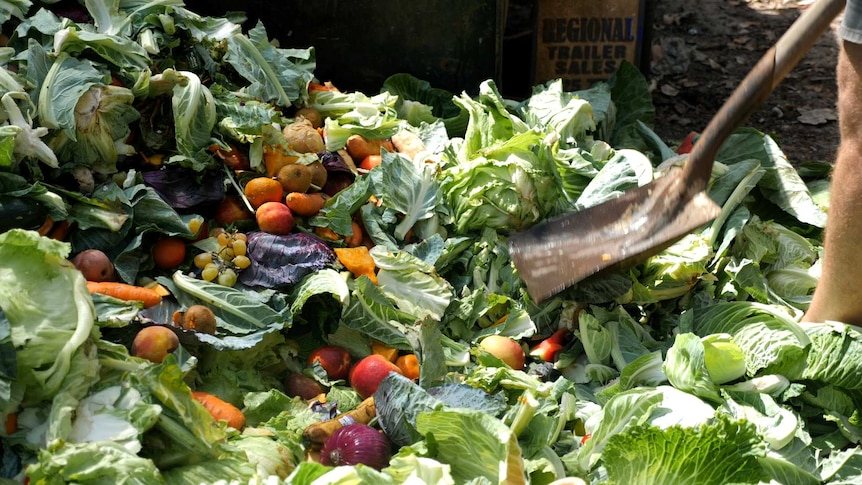 A pile of fruits and vegetables on the ground with a shovel visible in the foreground.