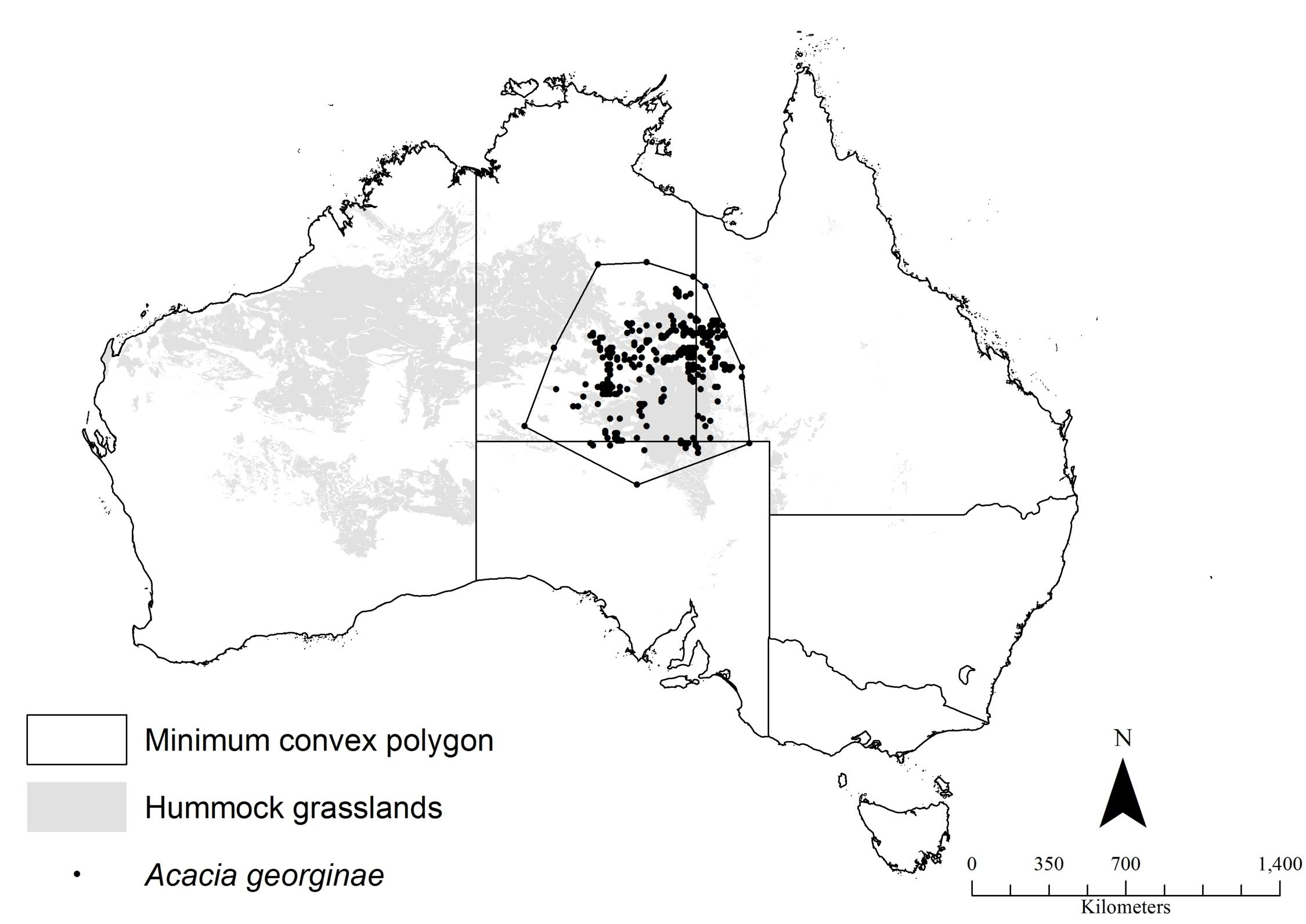 A map of Australia showing location of Georgina gidgee in centre.
